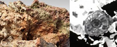 Στο φως νέοι αρχαιολογικοί θησαυροί απο ναυάγιο των Αντικυθήρων