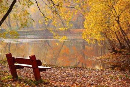 Những mùa thu đi qua