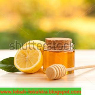 madu untuk diet menurunkan berat badan dengan madu murni