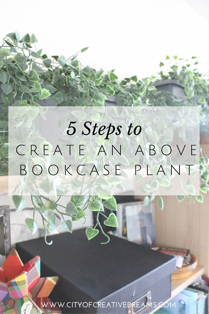 5 Steps to Create an Above Bookcase Plant   City of Creative Dreams