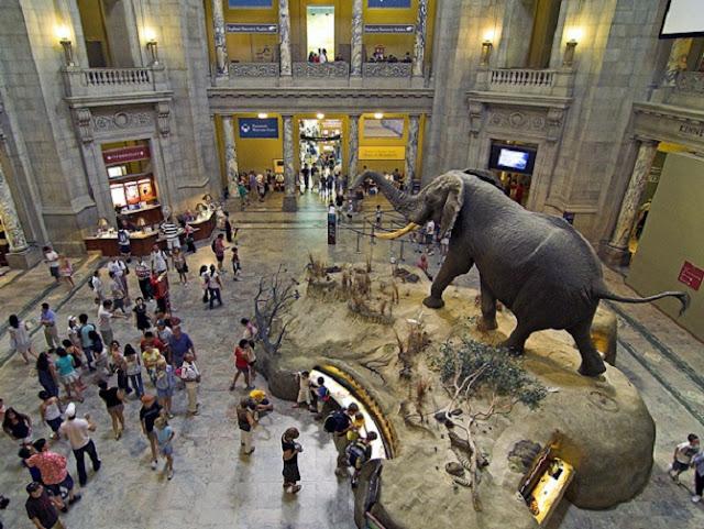 Ir com criança no Las Vegas Natural History Museum em Las Vegas