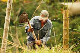 Indonesia Darurat Regenerasi Petani Muda