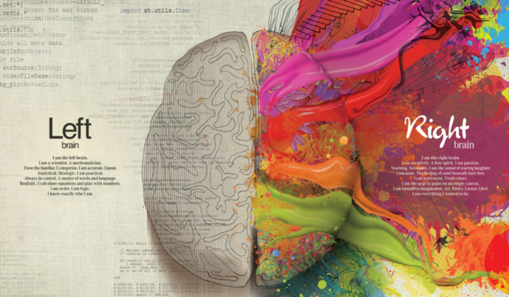 Right Brained Or Left Brained