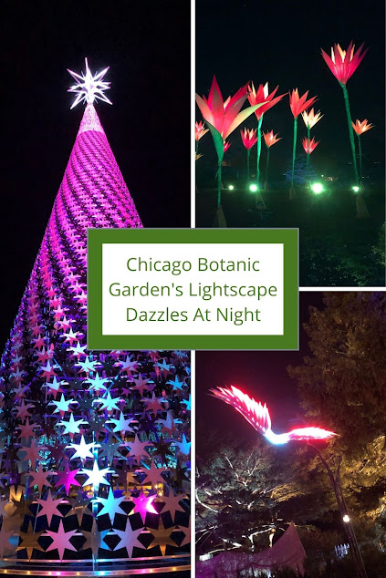 Dazzled By Nature Inspired Holiday Lights at Chicago Botanic Garden's Lightscape!