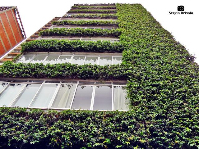 Detalhes da fachada do Edifício Buritama - Jardim Europa - São Paulo