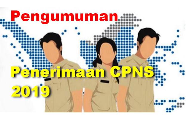 PENGUMUMAN RESMI PENERIMAAN CPNS TAHUN 2019 - MENPANRB