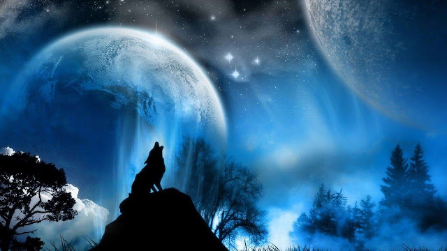 wallpaper wolf moon