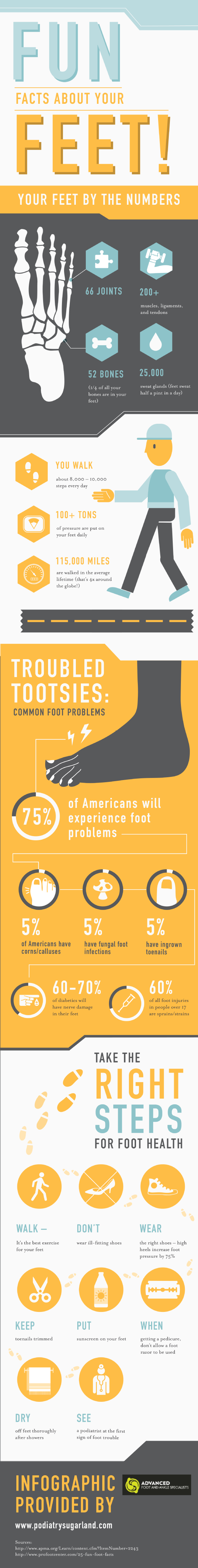 Fun Facts About Your Feet   #Infographic