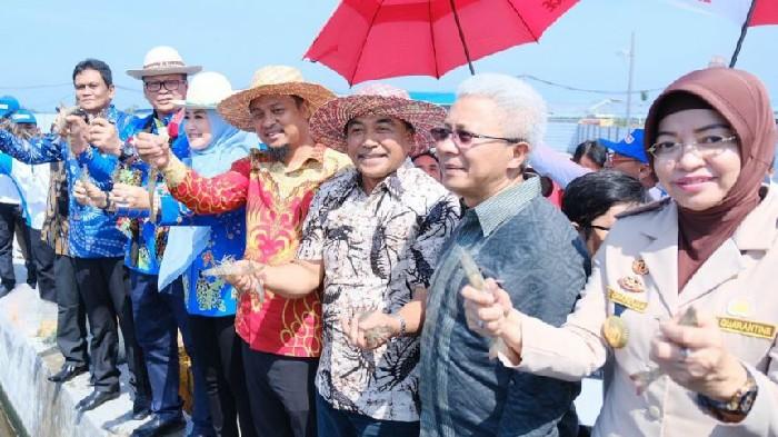 Menteri Edhy Prabowo Optimis Kembalikan Supremasi Industri Udang di Indonesia