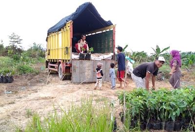 Ekspedisi Truk Surabaya Pontianak