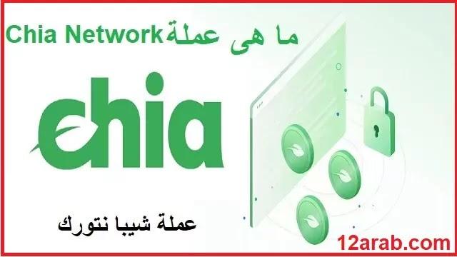 ما هى عملة chia network