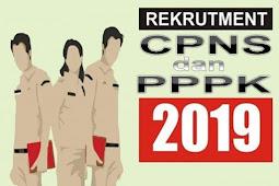 Kabar Gembira, Telah Terbit Jadwal Seleksi CPNS dan PPPK 2019