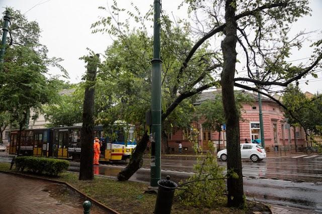 Érkeznek a biztosítókhoz a kárbejelentések a hétvégi viharos eső miatt