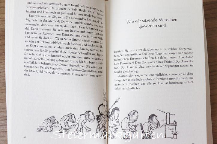 Buchvorstellung-Dorn-Methode-Steiermarkgarten