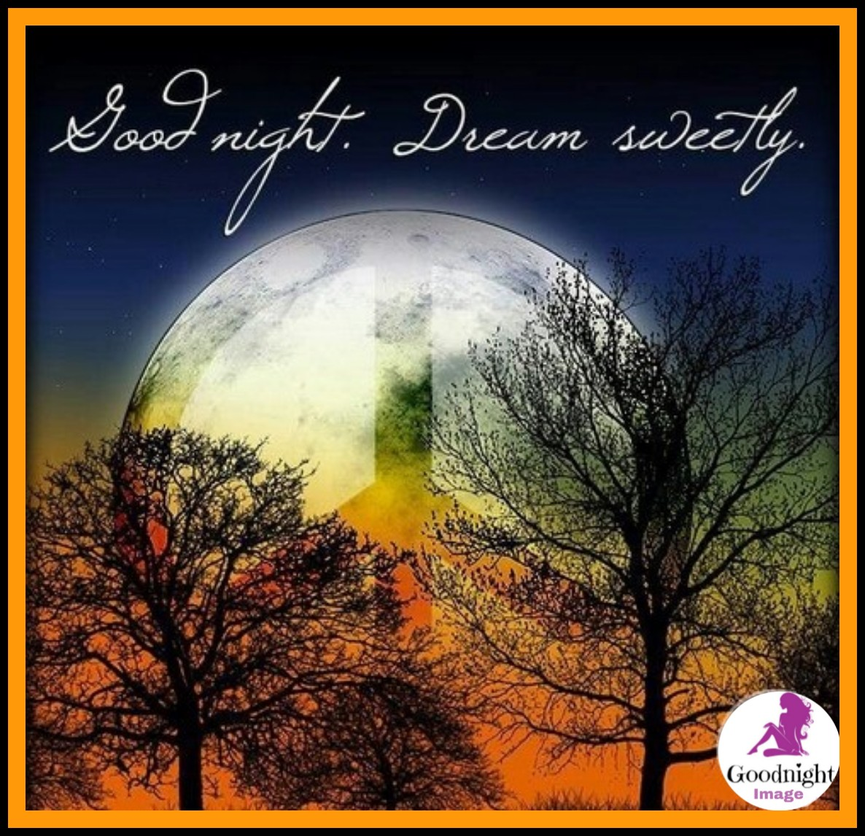 Good Night%2BImage 17
