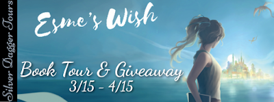 Book Showcase: Esme's Wish  by Elizabeth Foster
