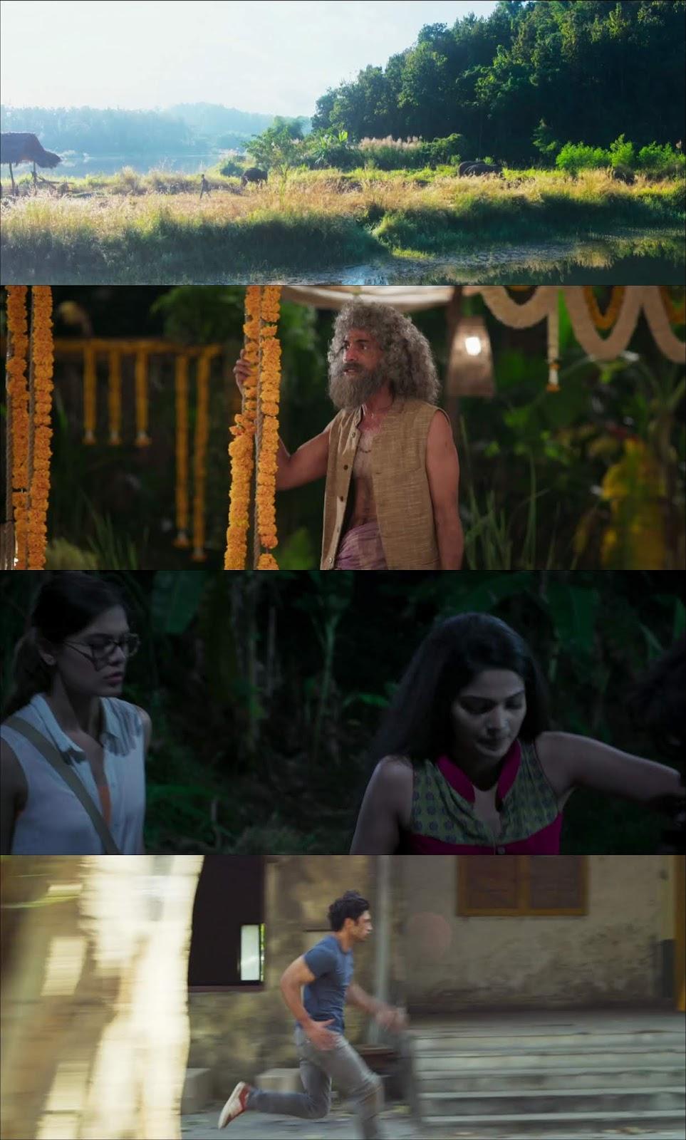 Junglee (2019) HD 720p Latino