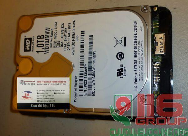 Phục hồi dữ liệu HDD Box Western 1Tb không nhận