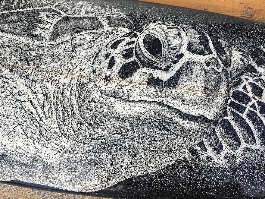 08-Sea-turtle-Surfboard-Jarryn-Dower-www-designstack-co