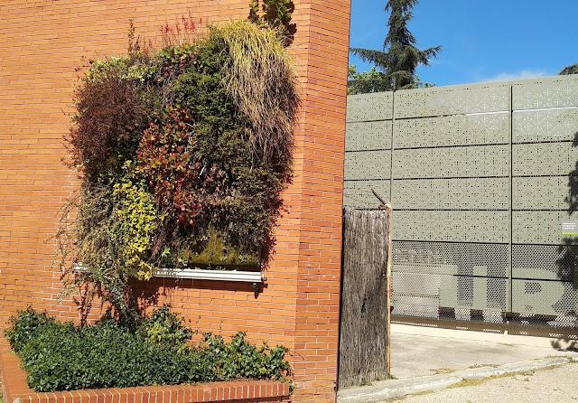 jardines verticales agronomos