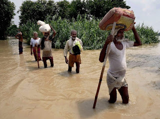 bihar-flood-toll-reaches-341