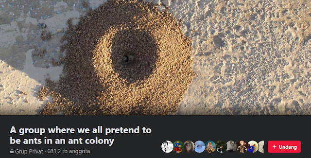 A group where we all pretend to be ants in an ant colony