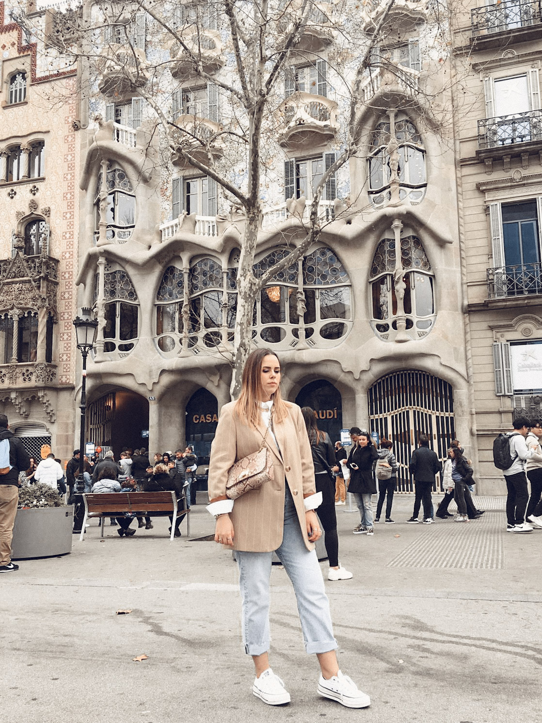 Casa Batlo, Barcelona