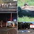 Cinco mortos em acidentes nas BRs 135 e 316 no Maranhão