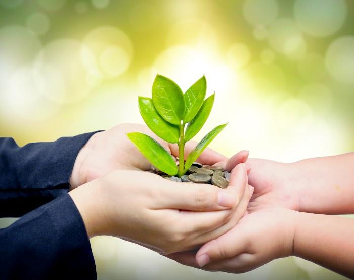 Tasarruf Ederek Geleceğe Yatırım Yapın