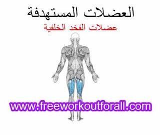 افضل تمارين عضلات الفخد و الارجل