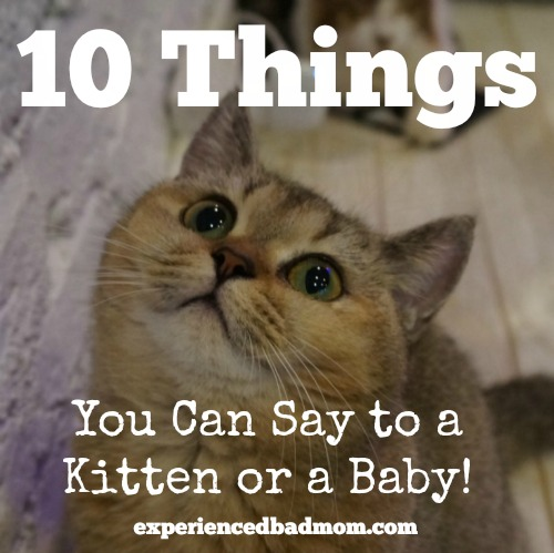 Friday Frivolity link-up blog party via Devastate Boredom -- Featuring Experienced Bad Mom's post 10 Things You Can Say to a Kitten or a Baby! -- Encouraging Quotes and Printables to Re-Motivate Your New Years Resolutions + LINKY!