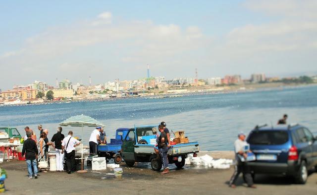 Mar Piccolo, Taranto, commercianti, mercato ittico, mare