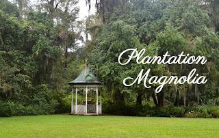 Article visiter Plantation Magnolia