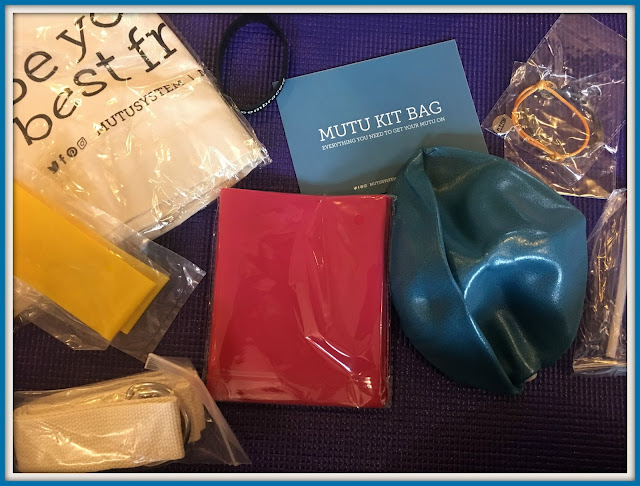 contents of MUTU system kit bag #mutusystem