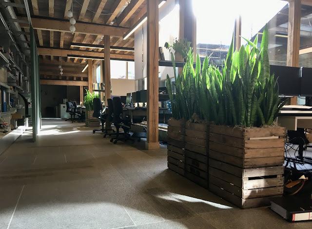 Verhuur en verkoop van planten voor bedrijf kantoor event beurs