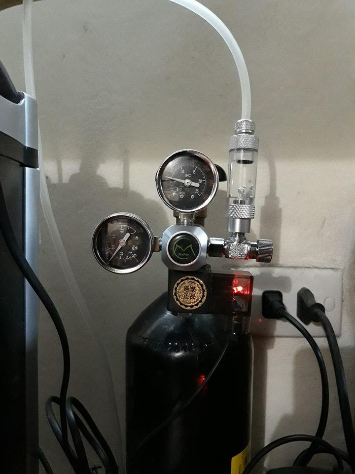 Hồ thủy sinh có bình CO2 sử dụng van điện Mufan
