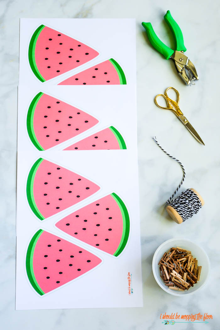 Watermelon Banner Decoration