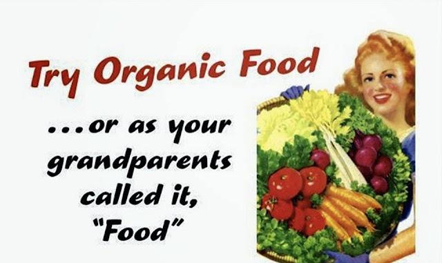 fort lauderdale catering organic