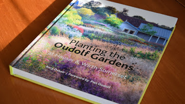 Planting the Oudolf Gardens (en Hauser & Wirth Somerset)