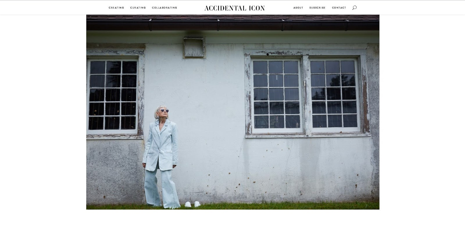 primer-nishi-dlya-bloga-the-accidental-icon-blog-niche-fashion