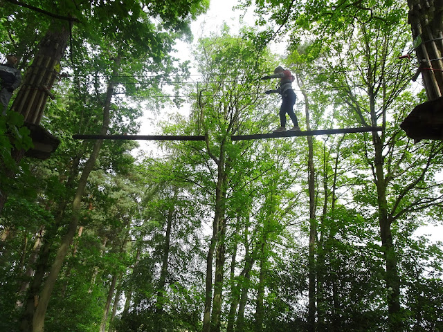 Go Ape tree top challenge Northumberland, daughter climbing in trees