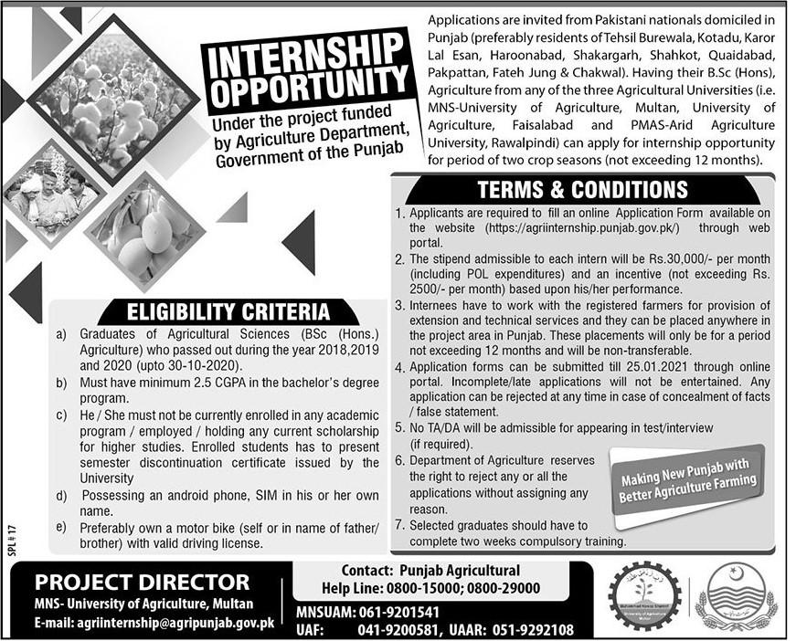 Internship 2021 - Internships for Agri Graduates 2021 - Punjab Agriculture Department Jobs 2021 - Online Application Form - agriinternship.punjab.gov.pk
