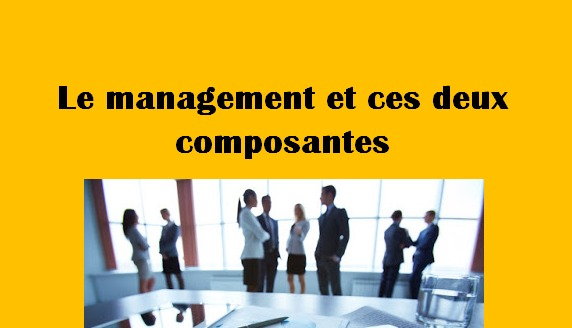 Le management et ces deux composantes : la stratégie et l'organisation
