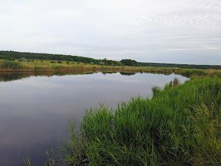 Кам'янка, Добропільський р-н, Донецька обл. Заказник «Заплава річки Бик»