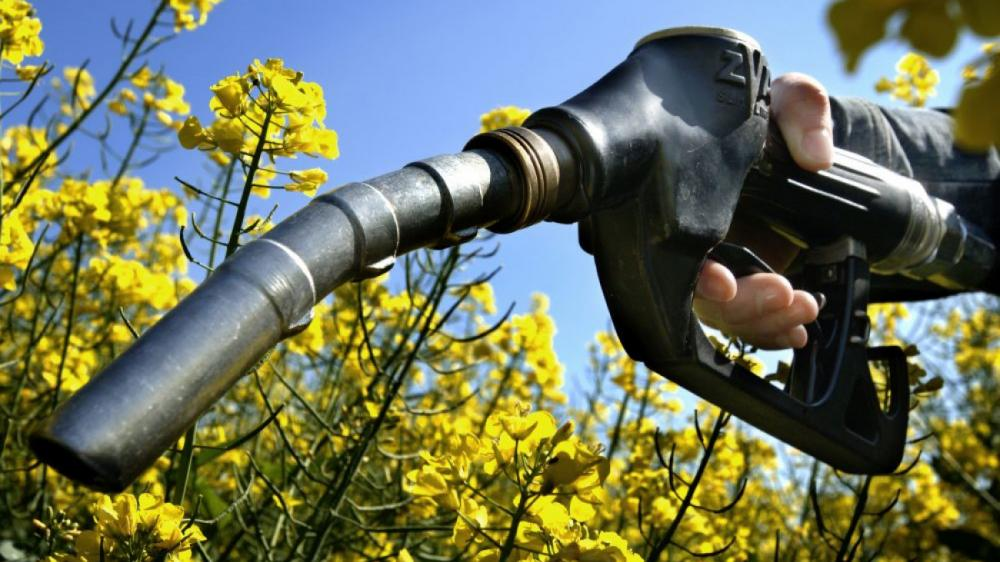 Προετοιμάζεται το έδαφος για τη δυναμική είσοδο των βιοκαυσίμων