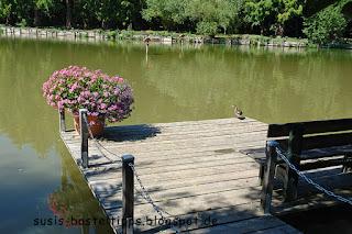 Bank und Ente am See: Foto von unabh. Stampin' Up! Demonstratorin in Coburg