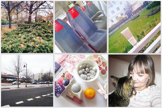 Listopad w zdjęciach