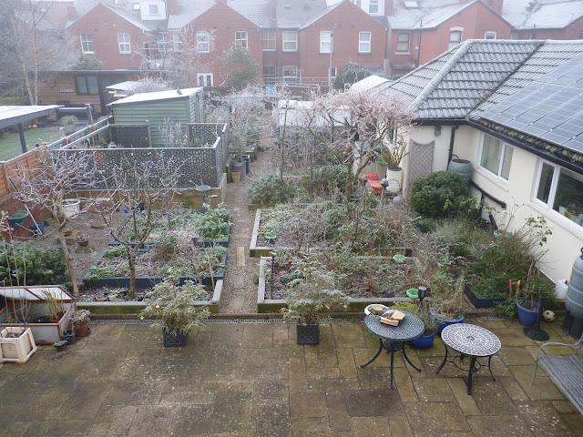 Hereford, Frost, Garden
