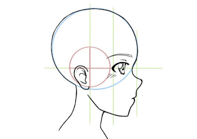 dessiner l'oeil de profil