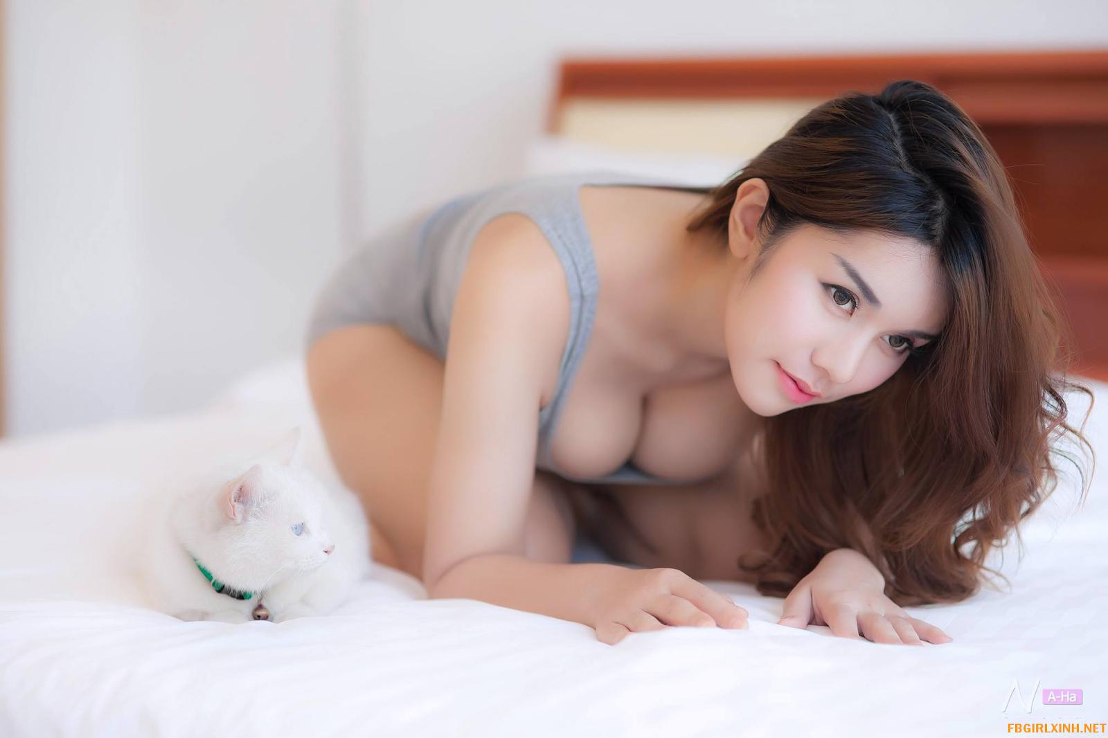 Chú mèo 3D mắt trắng mắt xanh @BaoBua: Profile Mix
